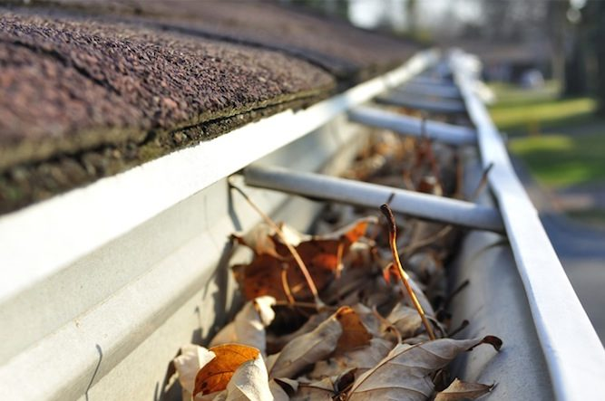 Tallahassee Gutter Cleaning & Maintenance
