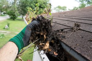 Gutter cleaning services for Tallahassee and surronding areas.