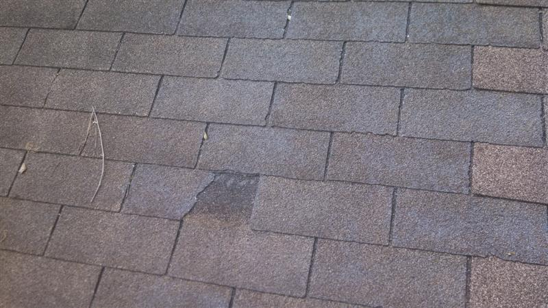 Broken shingles can be corrected before a leak starts!
